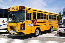Dodge bus