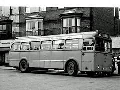 Daimler freeline