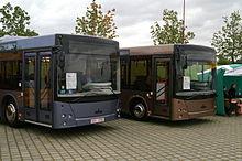 Maz 206