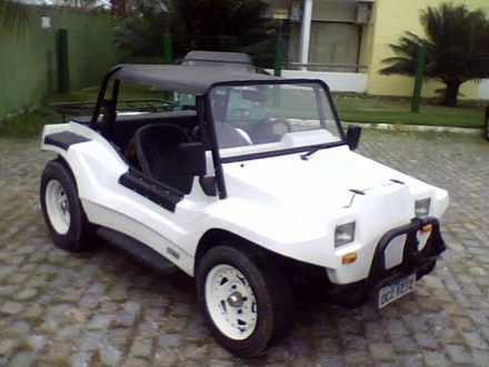 Puma buggy
