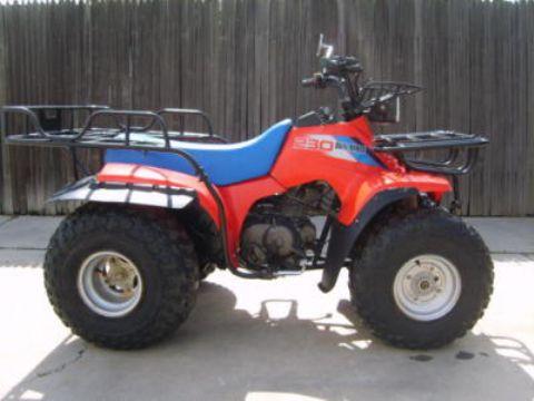 Suzuki 230