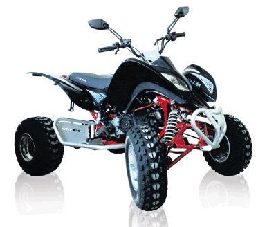 Wt motors 250