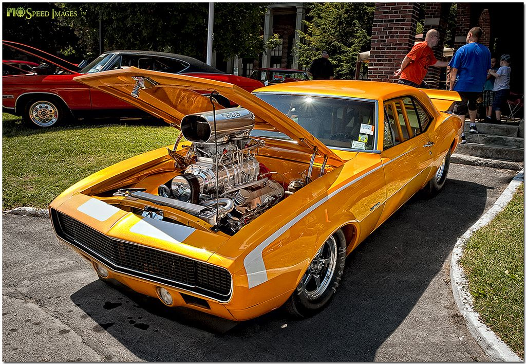 Wild '67 Camaro
