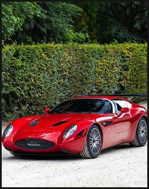 Maserati Mostro Zagato~