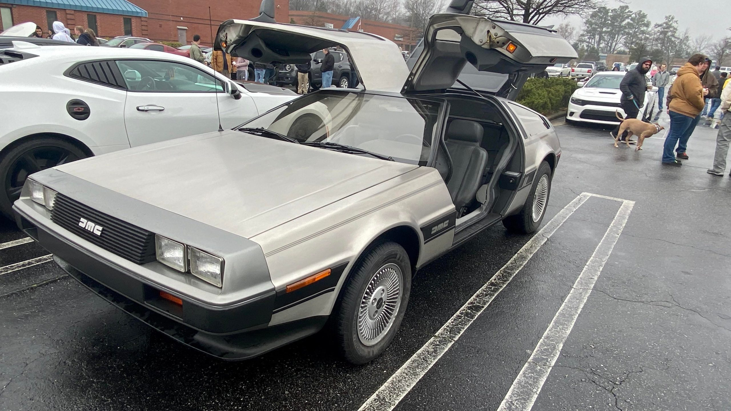 Great Scott! A Delorean