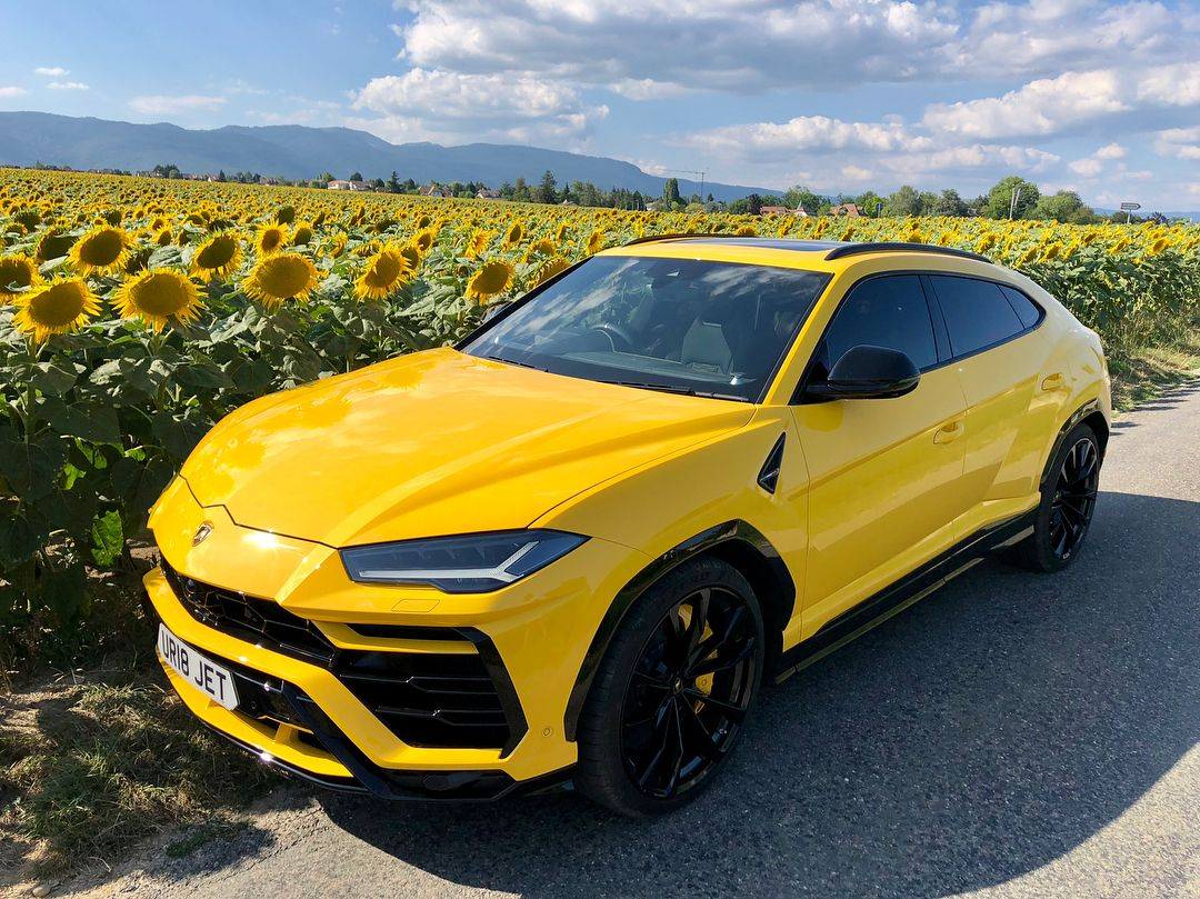 "RANA on Instagram: ""Bumble Bees ? on sunflowers ? ????????#urus #svroadster"""