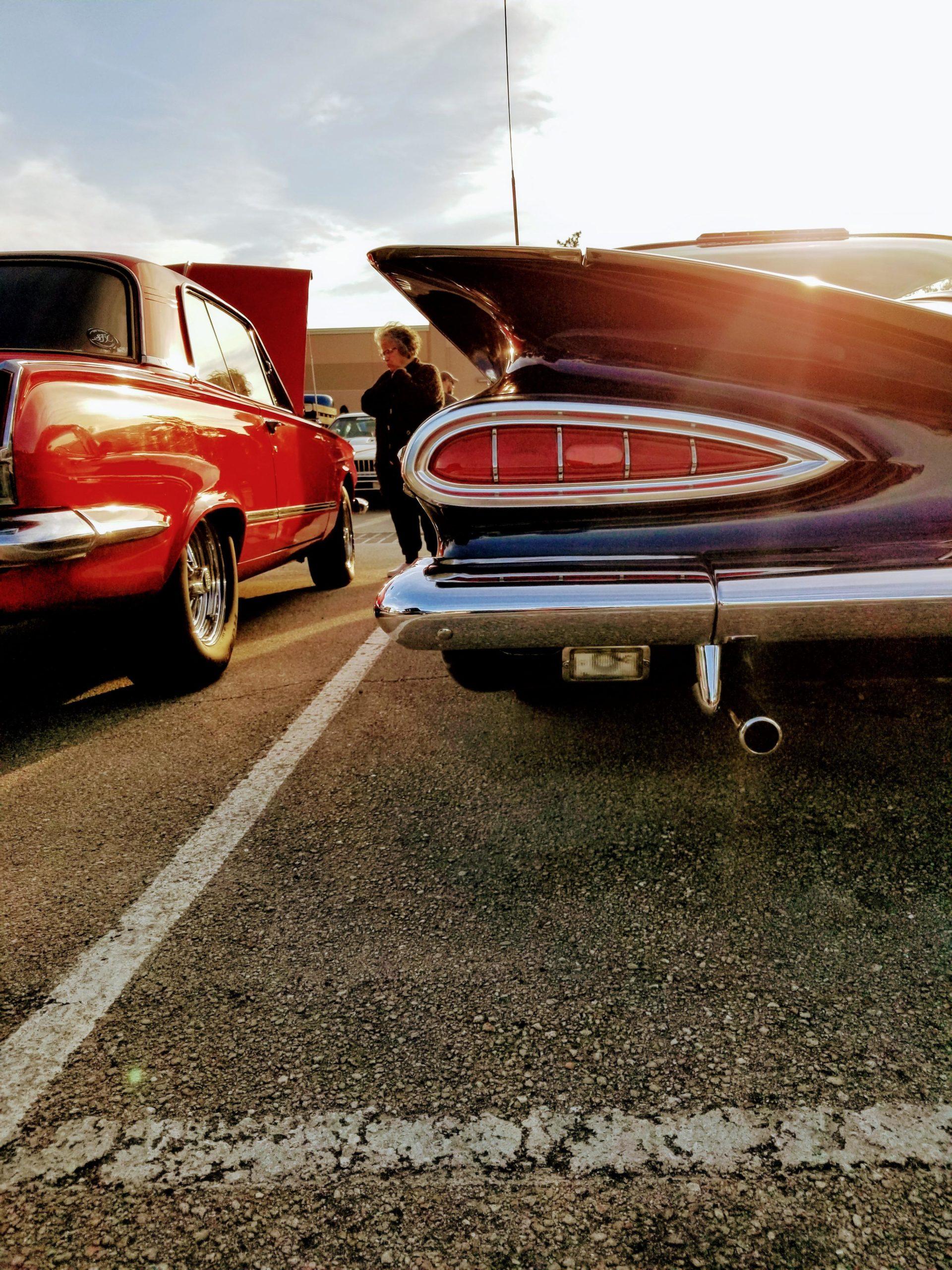 Beautiful impala.