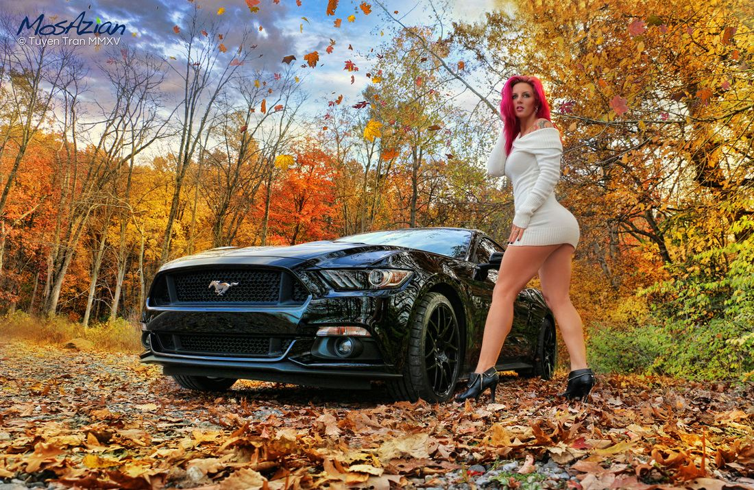 Mustang – Let's Buy Together  AutoShopin.com
