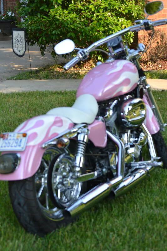 Pink 2005 Harley Davidson Sportster – Harley Davidson Forums